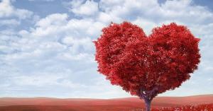 Ofertas especiales de San Valentín